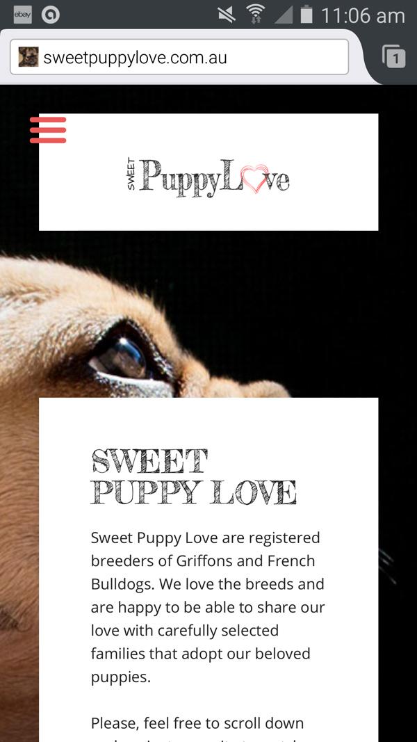 beautifylly responsive website